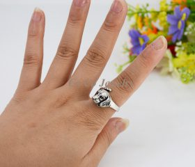 Animal Ring – Labrador